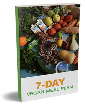 7 day vegan plan